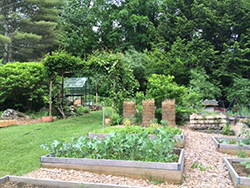 Organic vegetable and herb garden